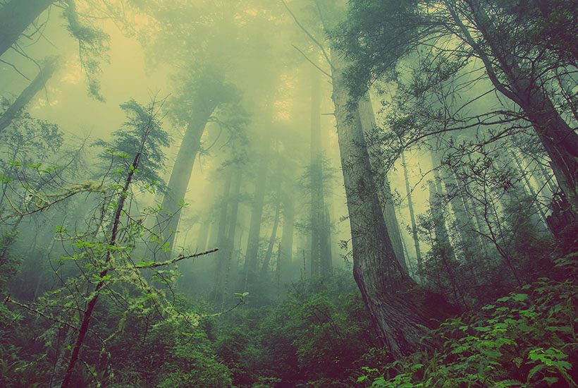 13 Scary Places in America