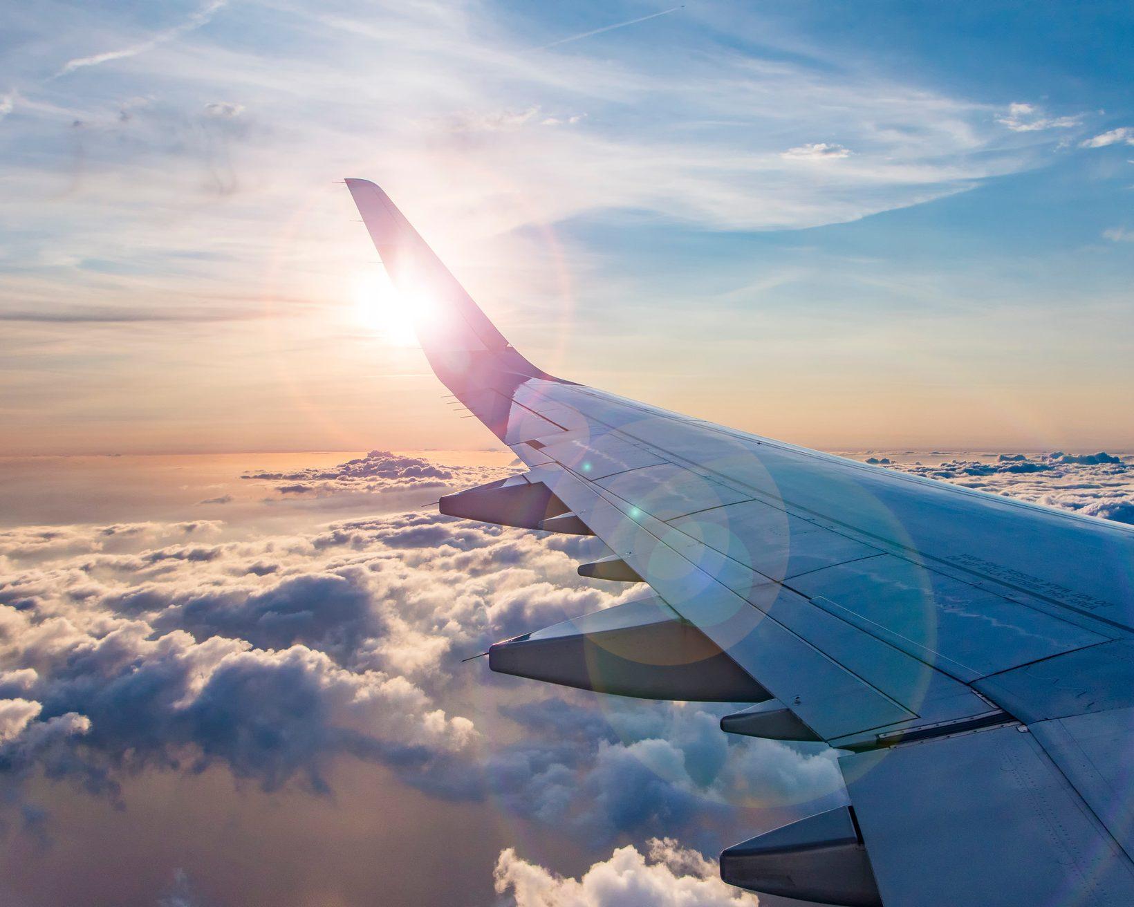 Flight search trends in a COVID-19 world