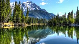 Find cheap flights from Norfolk to Alberta