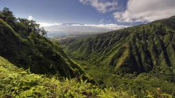 Find cheap flights from North Dakota to Kahului