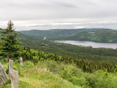 Cheap Flights To Newfoundland And Labrador From 384 Kayak
