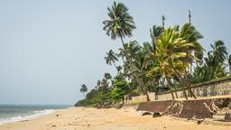 Find cheap flights from Newark Liberty Airport to Libreville