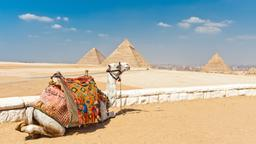 Find cheap flights from Lubbock to Cairo