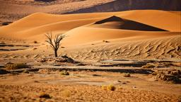 Find cheap flights from New Windsor to Namibia