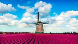 Find cheap flights from Portland to the Netherlands