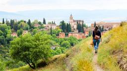 Find cheap flights from Michigan to Granada