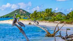 Find cheap flights from Oregon to Grenada
