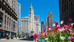 Find cheap flights from Coolangatta to Chicago