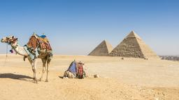 Find cheap flights from Oregon to Egypt