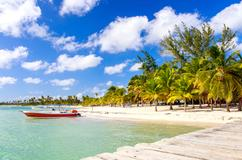 Deals for Hotels in Bavaro