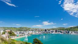 Find cheap flights from San Antonio to Wellington