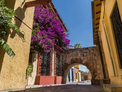 Car Rentals In Oaxaca From 7 Day Search For Cars On Kayak