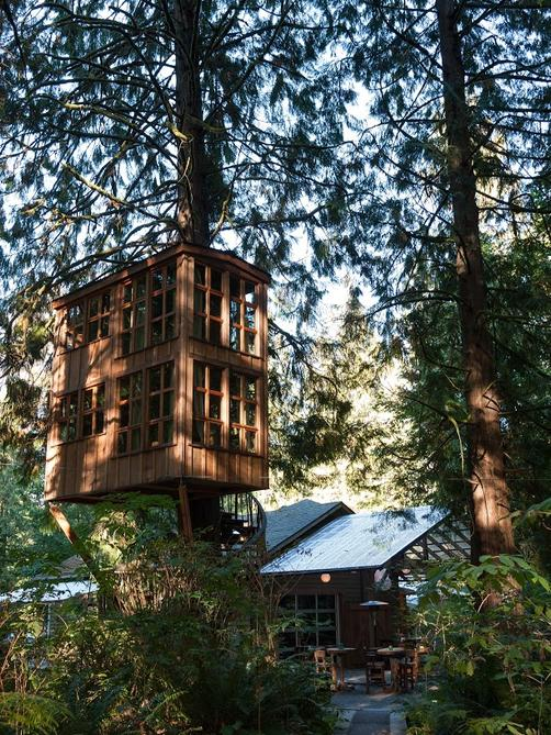 TreeHouse Point - Issaquah