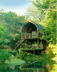 Serenity Forest Eco Reserve
