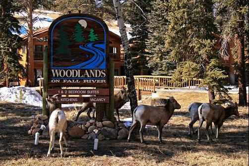 Woodlands on Fall River - Estes Park