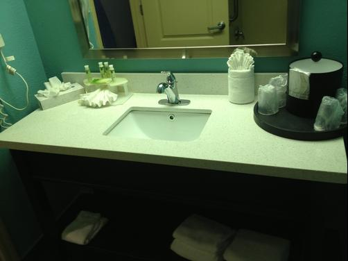 Best Western PLUS Sanford Airport/Lake Mary Hotel - Sanford - Bathroom