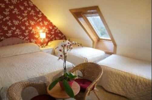 MacIntosh Guest House - Edinburgh - Bedroom