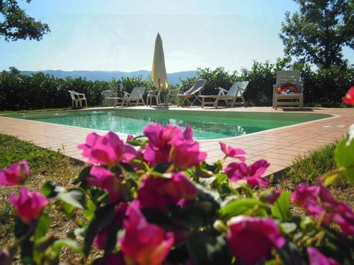 Agriturismo San Clemente - Greve in Chianti - Pool