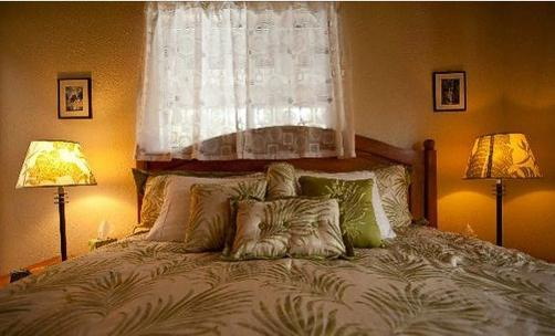 Hale Moana Bed & Breakfast - Pahoa - Bedroom