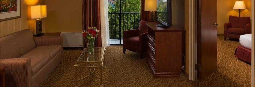 DoubleTree by Hilton Asheville - Biltmore - Asheville - Living room