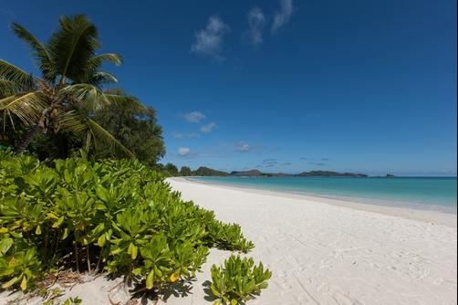 Acajou Beach Resort - Praslin Island - Beach
