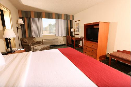 Rocky Mountain Park Inn - Estes Park - King bedroom