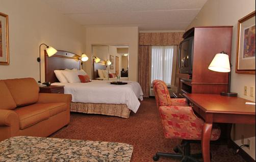 Hampton Inn Oneonta - Oneonta - Bedroom