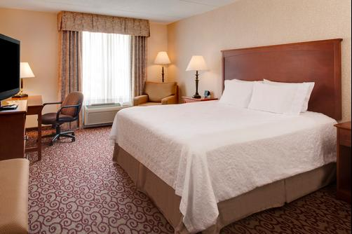 Hampton Inn Dubuque - Dubuque - King bedroom