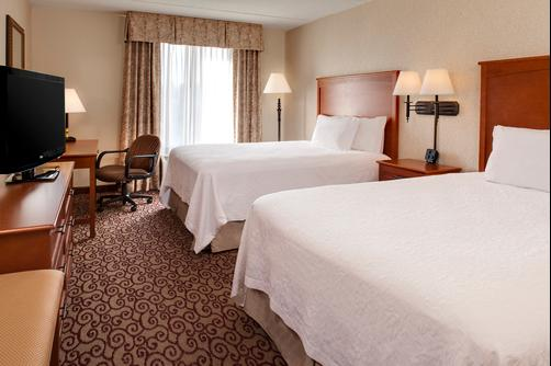 Hampton Inn Dubuque - Dubuque - Double room