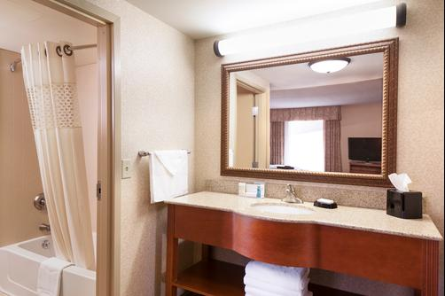 Hampton Inn Dubuque - Dubuque - Bathroom