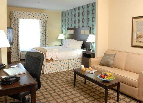 Holiday Inn Express Hotel & Suites Atlanta Southwest-Fairburn - Fairburn - Bedroom