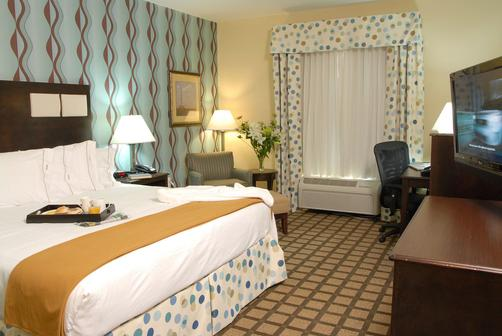 Holiday Inn Express Hotel & Suites Atlanta Southwest-Fairburn - Fairburn - King bedroom