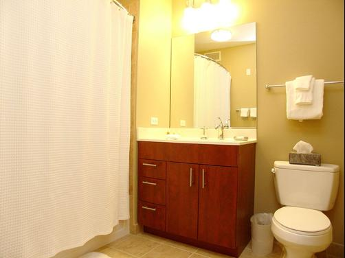 Chicago Property Concierge at 215 West - Chicago - Bathroom