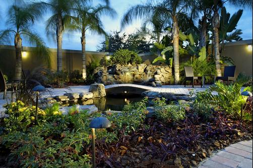 Courtyard by Marriott Tampa Oldsmar - Oldsmar - Outdoors view
