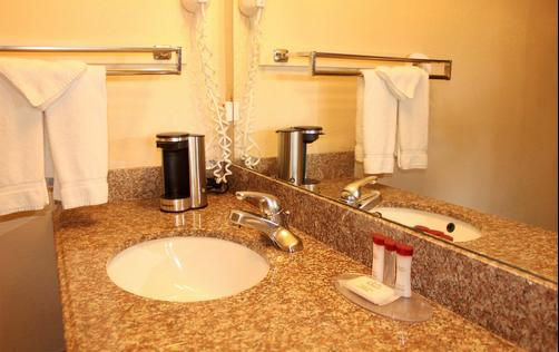 Ramada Limited San Diego/Near SeaWorld - San Diego - Bathroom