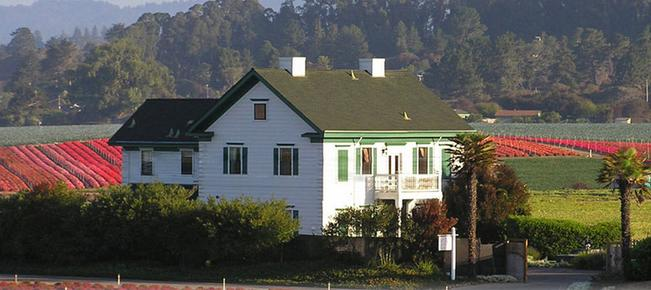 Flora Vista Inn - La Selva Beach - Building
