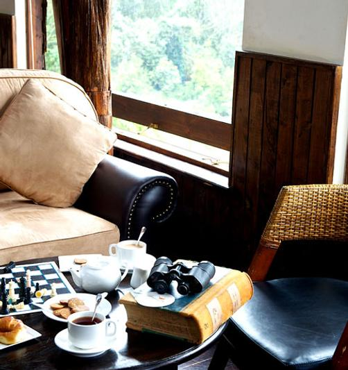 Treetops Lodge - Nyeri - Living room