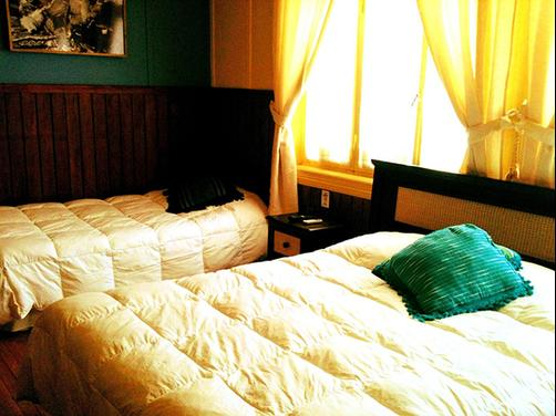 Hostal B&B - Punta Arenas - Bed