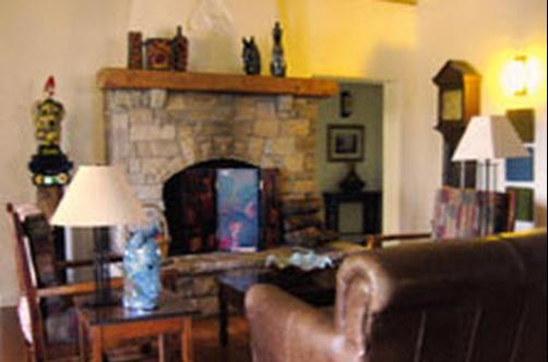 Bear Mountain Lodge - Silver City - Living room