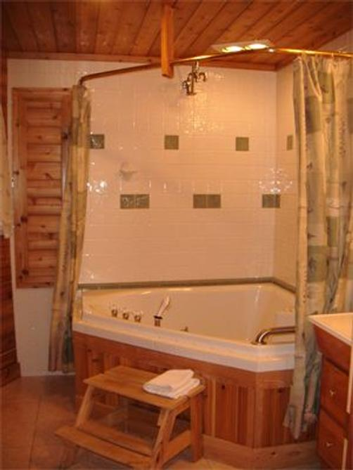 Northern Lights Bed and Breakfast - Old Forge - Bathroom