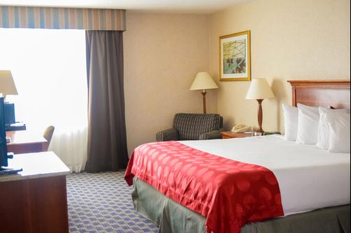 Ramada Jacksonville/Baymeadows - Jacksonville - King bedroom