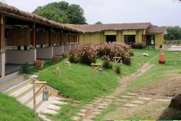 Asiatic Lion Lodge