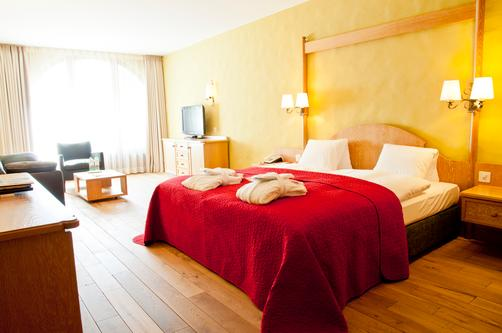 Hotel Rosatsch - Pontresina - Double room