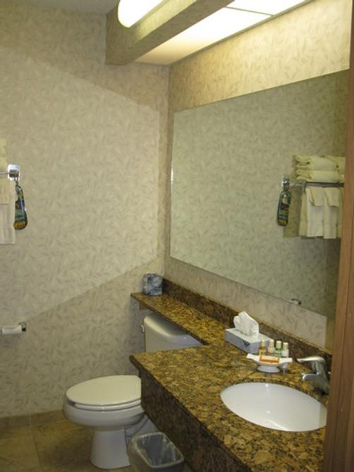 Mineral Palace Hotel And Gaming - Deadwood - Bathroom