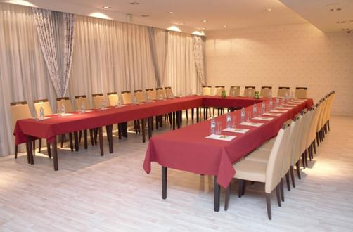 Hotel Aviator - Radom - Conference room