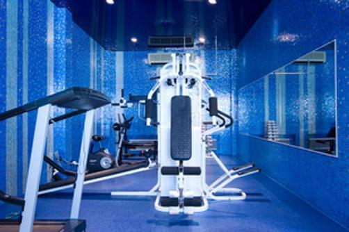 Royal Zenith Hotel II - Moscow - Gym