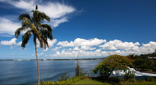 Hale Kai Hawaii Bed & Breakfast - Hilo - Outdoors view