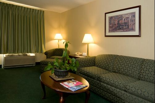 Meadowlands Plaza Hotel - Secaucus - Living room