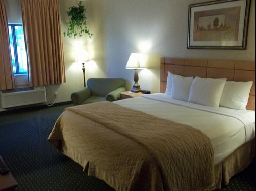 Baymont Inn & Suites Waterloo - Waterloo - King bedroom