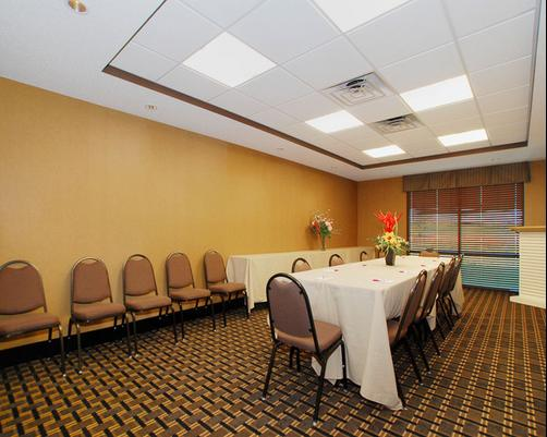 Comfort Suites - Rochester - Conference room
